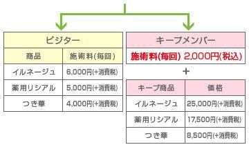 html_code_04_price